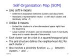 self organization map som