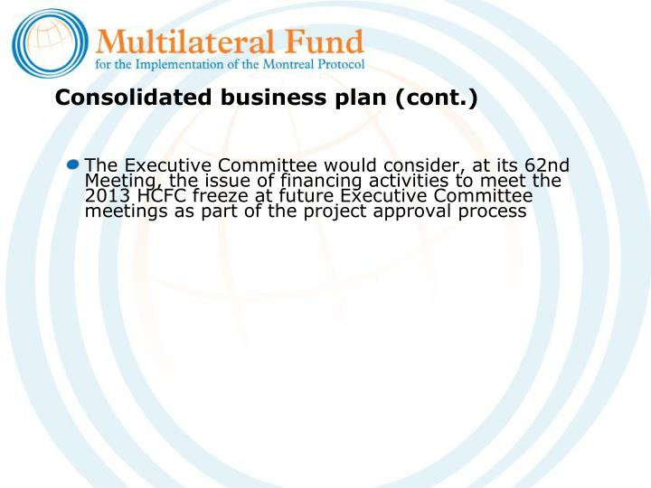 Consolidated business plan (cont.)