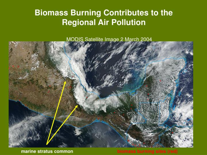 Biomass Burning Contributes to the Regional Air Pollution