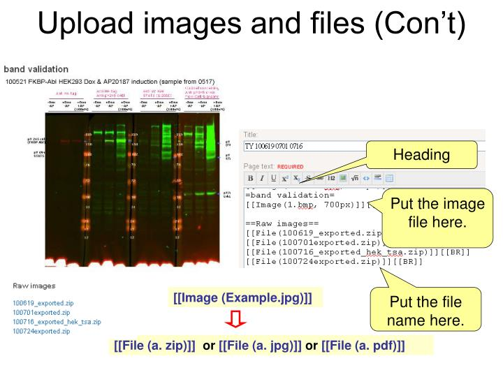 Upload images and files (Con't)