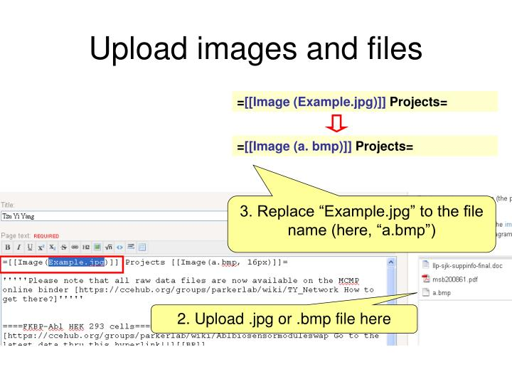 Upload images and files