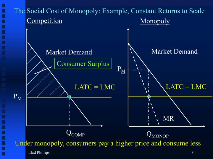 The Social Cost of Monopoly: Example, Constant Returns to Scale