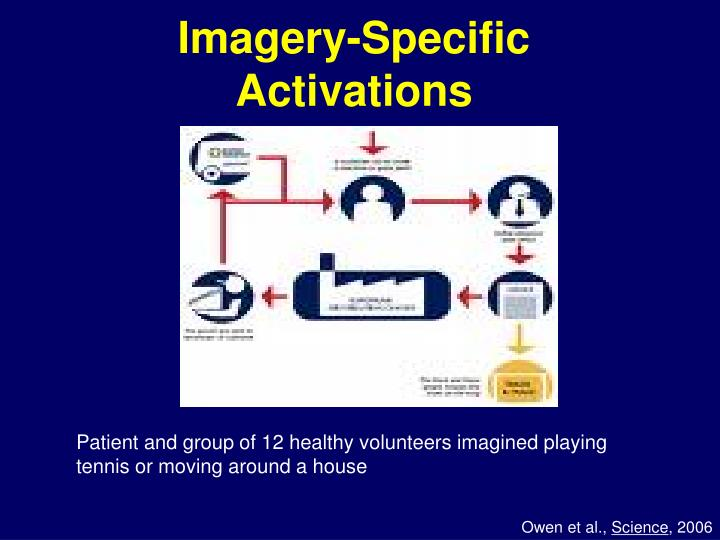 Imagery-Specific Activations