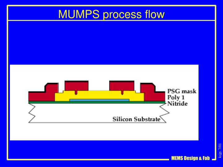 MUMPS process flow