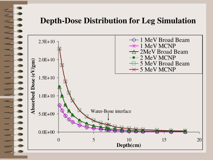 Depth-Dose Distribution for Leg Simulation