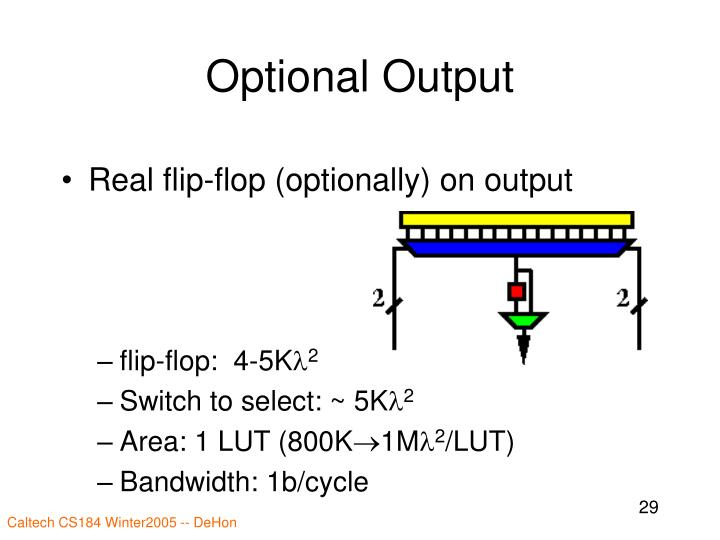 Optional Output