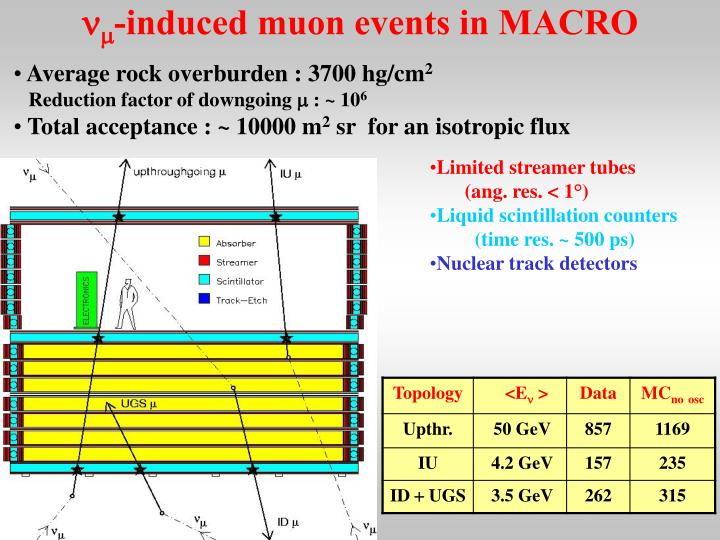 N m induced muon events in macro