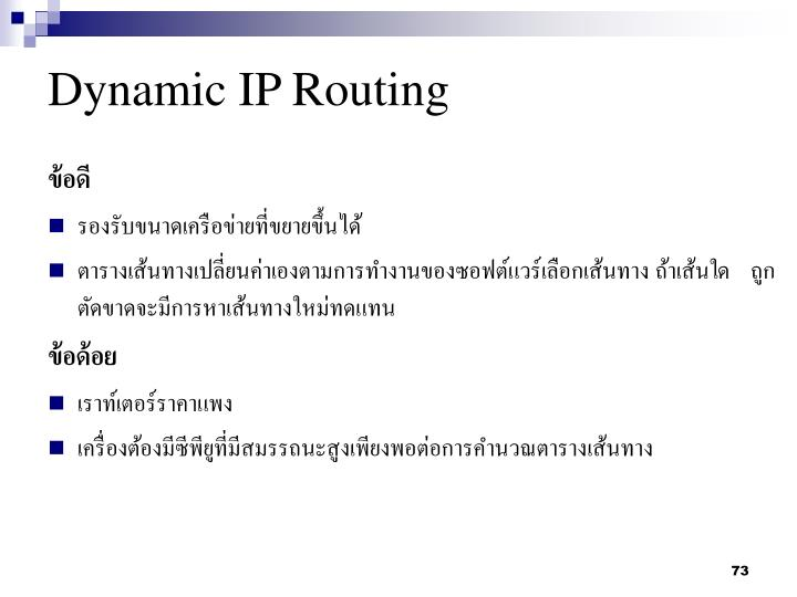 Dynamic IP Routing