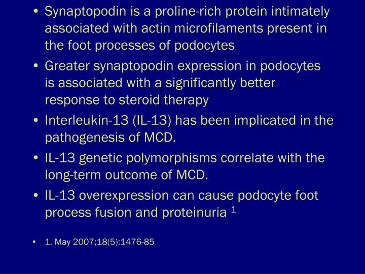 Synaptopodin is a proline-rich protein intimately associated with actin microfilaments present in the foot processes of podocytes