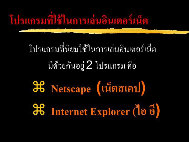 โปรแกรมที่ใช้ในการเล่นอินเตอร์เน็ต