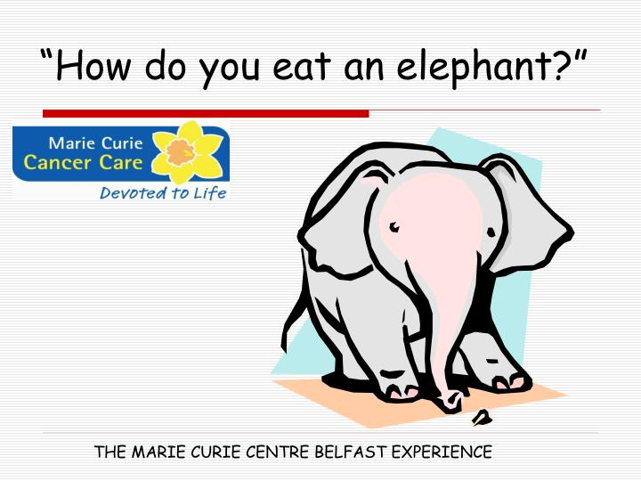 """How do you eat an elephant?"""