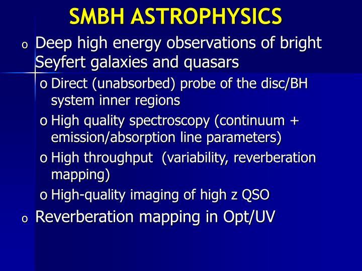 SMBH ASTROPHYSICS
