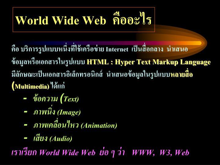 World Wide Web  คืออะไร