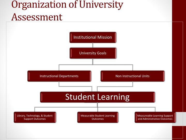 Organization of University Assessment
