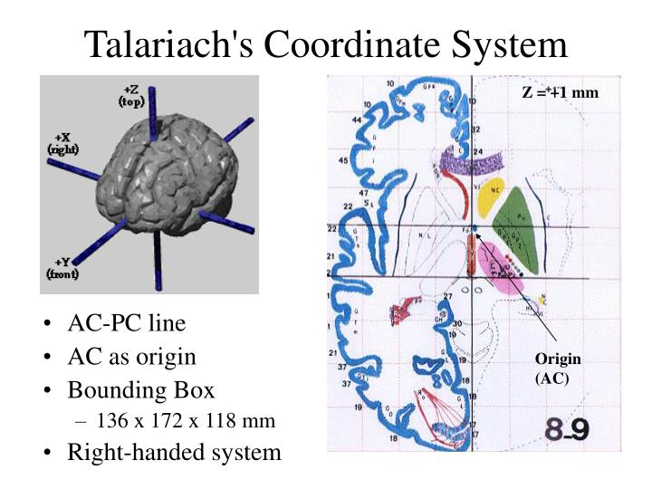Talariach's Coordinate System