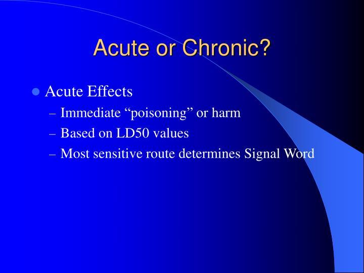 Acute or Chronic?