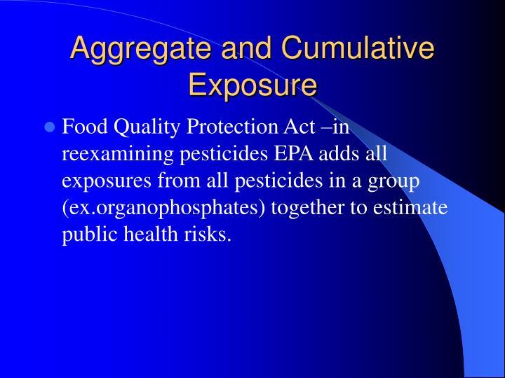 Aggregate and Cumulative Exposure