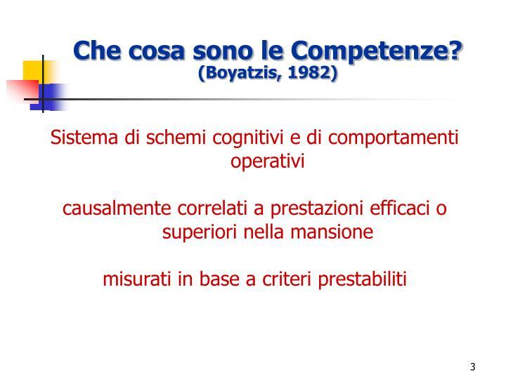 Che cosa sono le Competenze?