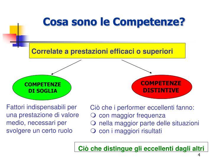 Cosa sono le Competenze?