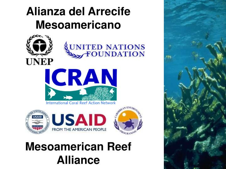 Alianza del Arrecife Mesoamericano