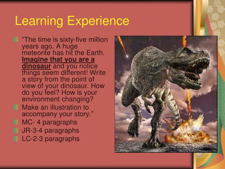 Learning Experience