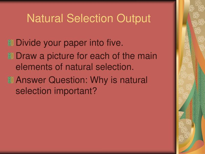 Natural Selection Output