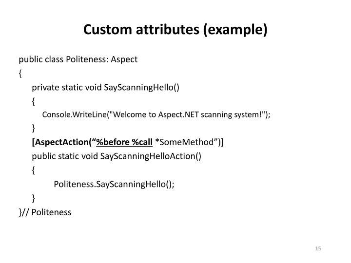Custom attributes (example)