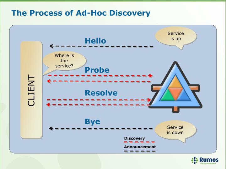 The Process of Ad-Hoc Discovery