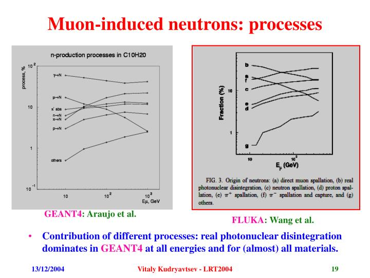 Muon-induced neutrons: processes