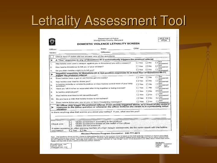 Lethality Assessment Tool