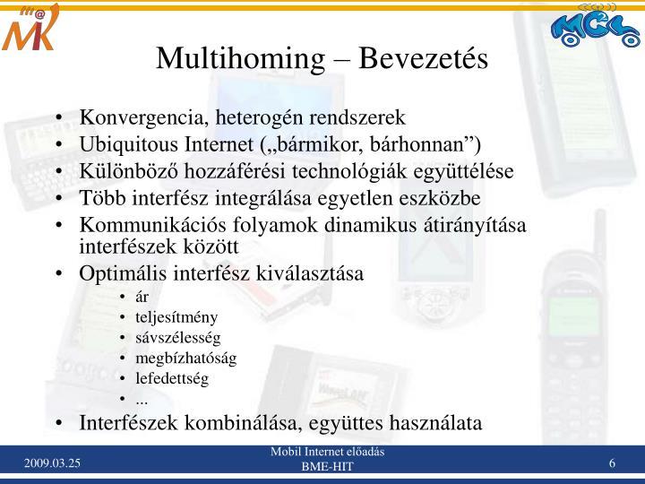 Multihoming – Bevezetés