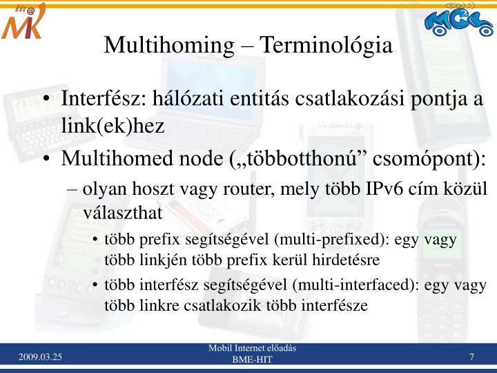 Multihoming – Terminológia