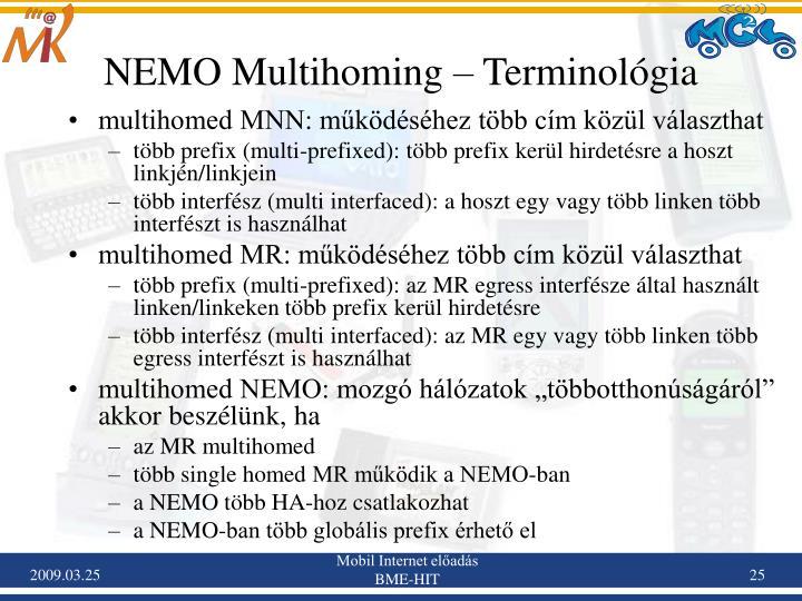 NEMO Multihoming – Terminológia