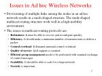 issues in ad hoc wireless networks2