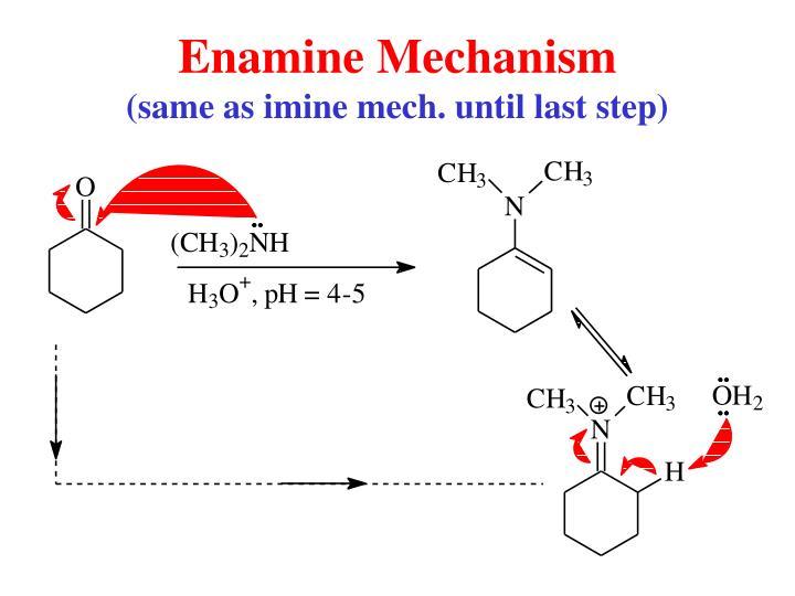 Enamine Mechanism