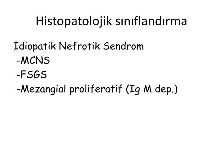 Histopatolojik snflandrma