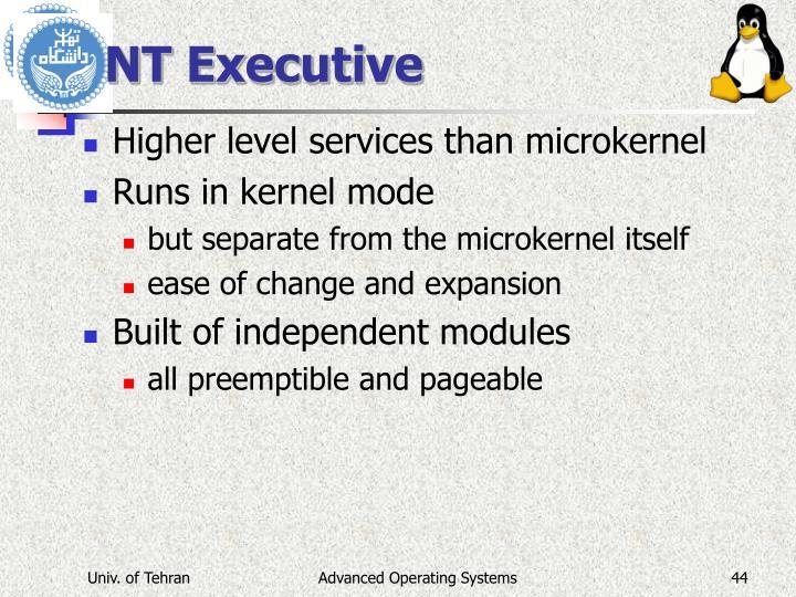 NT Executive