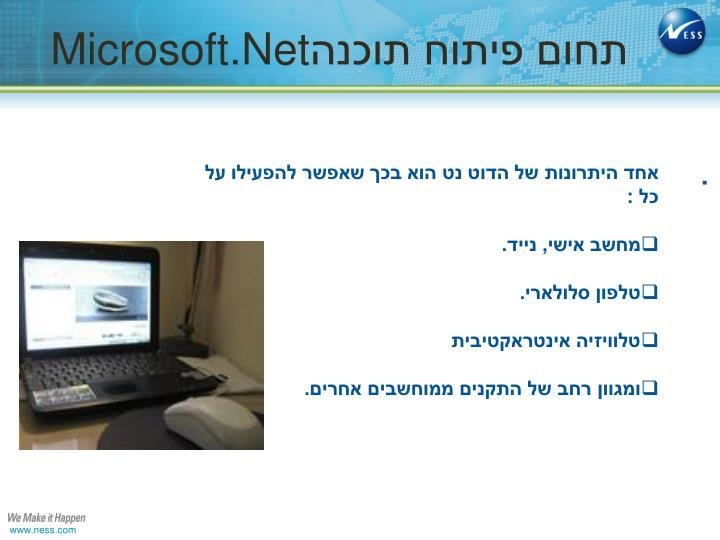 תחום פיתוח תוכנה