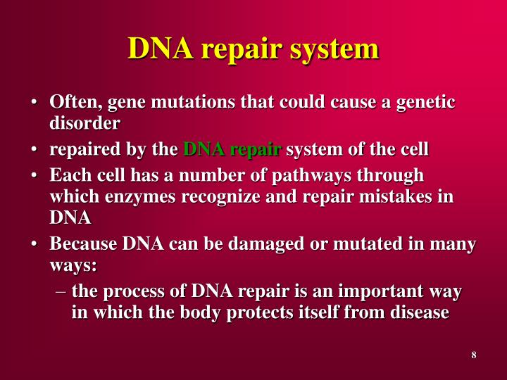 DNA repair system