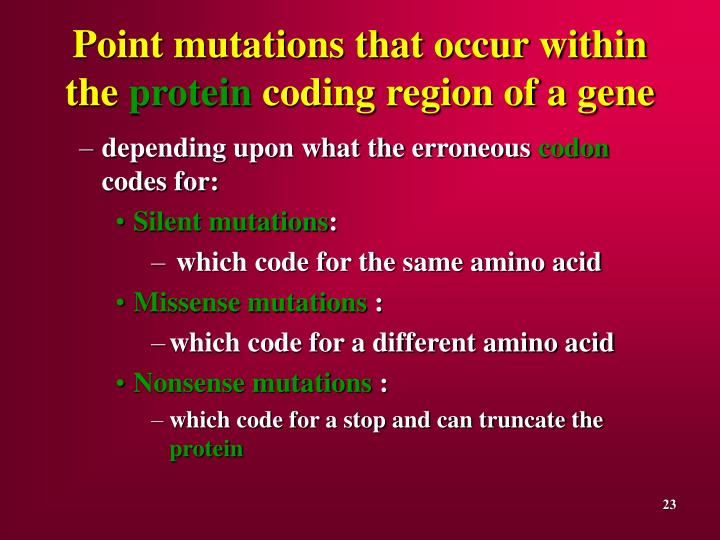 Point mutations that occur within the