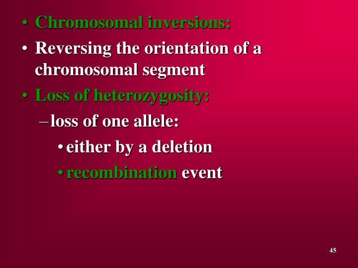 Chromosomal inversions: