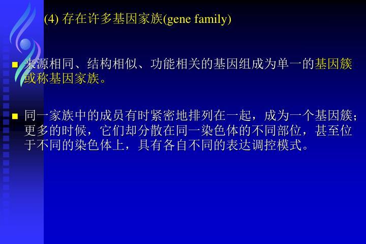 (4) 存在许多基因家族(