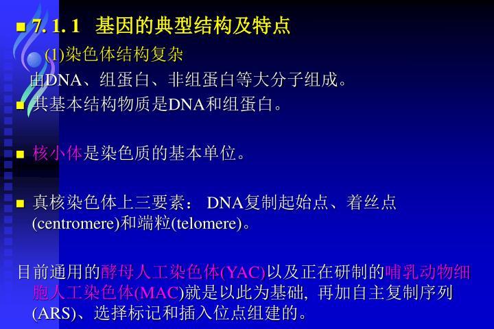7. 1. 1   基因的典型结构及特点