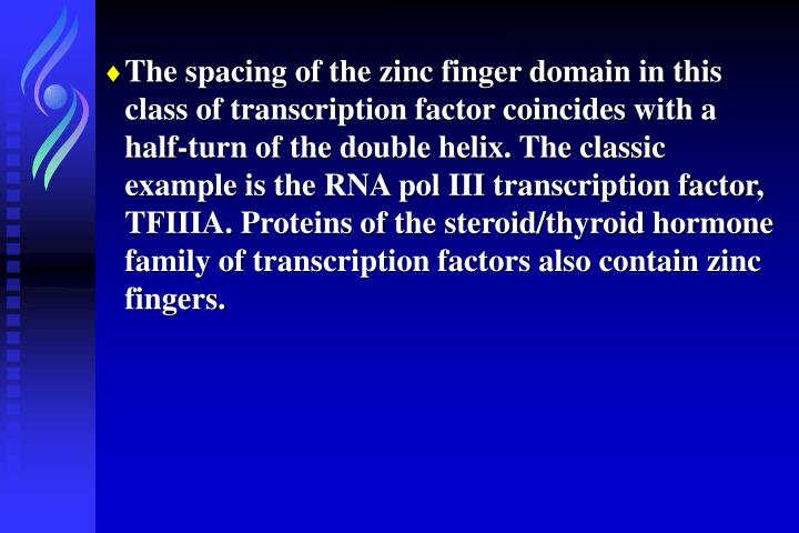 The spacing of the zinc finger domain in this class of transcription factor coincides with a half-turn of the double helix. The classic example is the RNA pol III transcription factor, TFIIIA. Proteins of the steroid/thyroid hormone family of transcription factors also contain zinc fingers.
