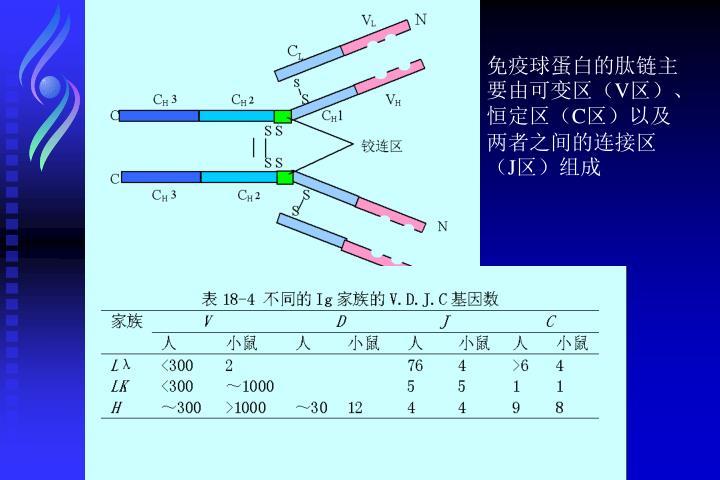 免疫球蛋白的肽链主要由可变区(