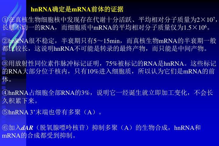 hnRNA
