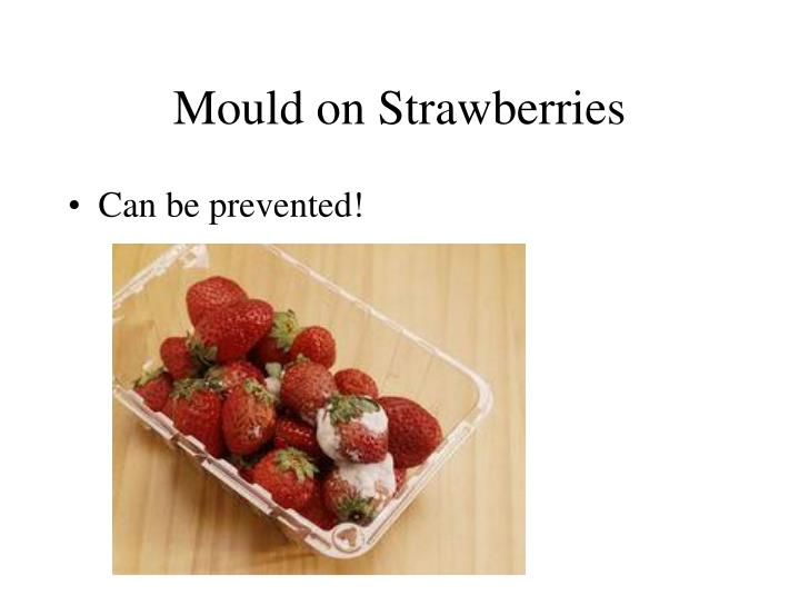 Mould on Strawberries