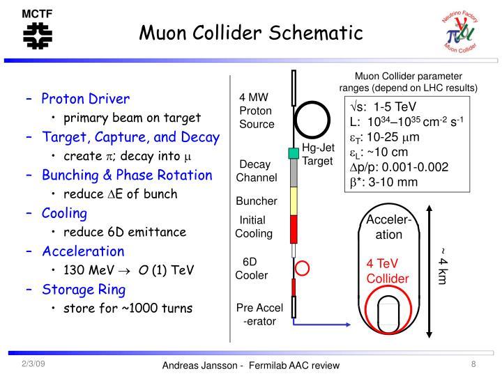 Muon Collider Schematic