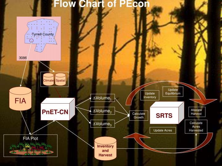 Flow Chart of PEcon
