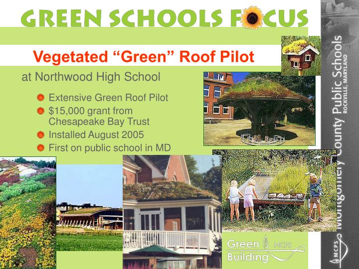 "Vegetated ""Green"" Roof Pilot"